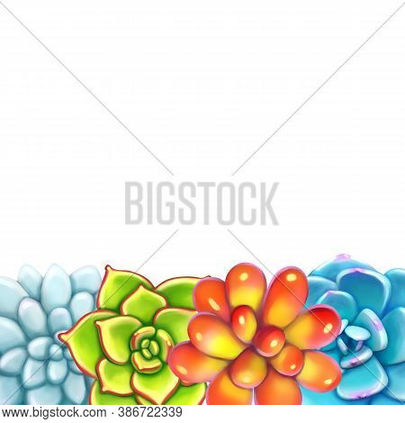 Floral Border. Succulents Arranged Un A Shape Of Frame