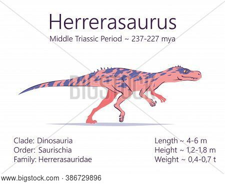 Herrerasaurus. Theropoda Dinosaur. Colorful Vector Illustration Of Prehistoric Creature Herrerasauru