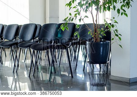 Empty Soft Black Chairs In A Large Empty Conference Room, Empty Large Room With No People