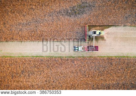 Harvesting oilseed rape in autumn field. A modern tractor stands directly next to the harvester combine and transports rapeseed. Aerial top view
