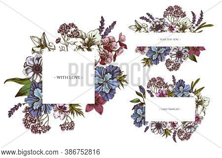 Floral Frames With Colored Anemone, Lavender, Rosemary Everlasting, Phalaenopsis, Lily, Iris Stock I