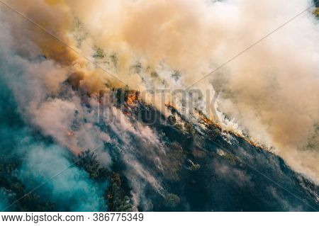 Smoke And Flame Nature Forest Fire In After Dry Season, Aerial Top View From Drone.