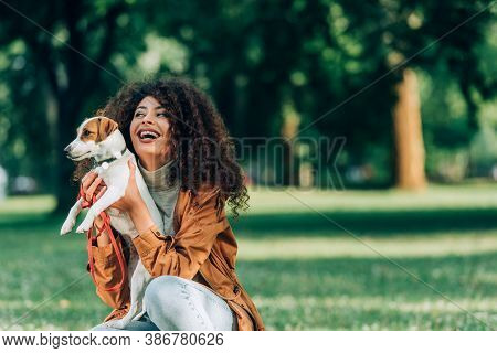 Curly Woman In Raincoat Holding Jack Russell Terrier In Park