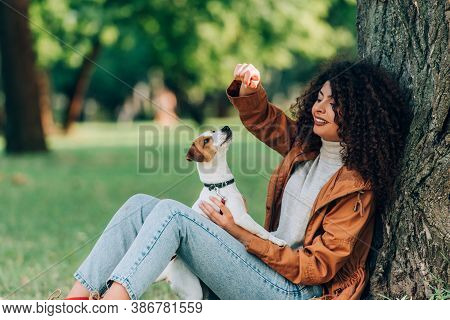 Young Curly Woman In Raincoat Playing With Jack Russell Terrier Near Tree In Park