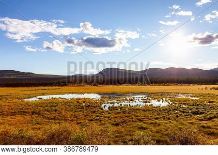 Beautiful View Of The Meadow Fields During A Sunny Sunset In Fall Season. North Of Whitehorse, Yukon