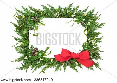 Christmas holiday festive background border with cedar cypress, juniper fir, mistletoe & red bow on white background. Design element with copy space. Top view, flat lay.