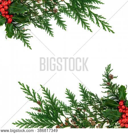 Cedar cypress & holly berry border natural winter decoration on white background. Decorative design for Xmas  & New Year festive season. Flat lay, top view, copy space.