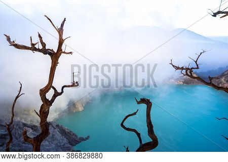 Kawah Ijien Volcano Sulphur Lake, East Java Indonesia. Beautiful Toxic Lake. Dead Dry Trees Near Sul