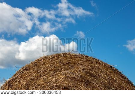 Round Hay Bales. Selective Focus On A Round Straw Hay Bale On A Agriculture Field Against A Blurred