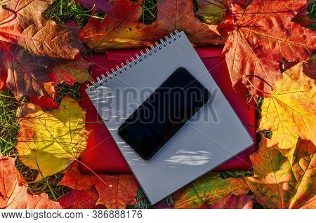 Autumn Composition With Red Laptop, Notebook And Phone On The Mapple Leaves