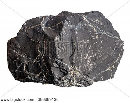 Large Shungite With Pyrite Streaks