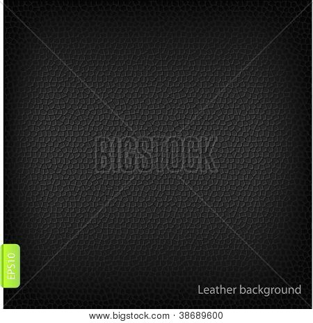 Leather background. Vector.