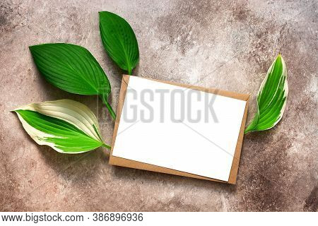 Blank Paper Card In Brown Envelope And Green Leaves. Mockup Of Invitation And Greeting Card. Company
