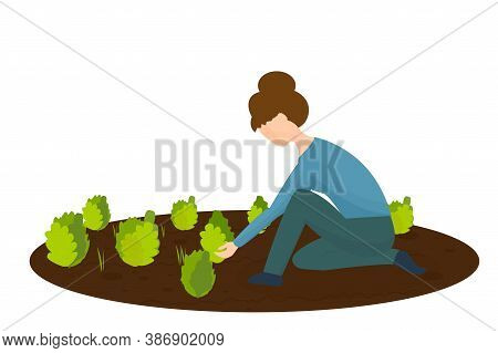 Woman Kneeling, Working In The Garden With Plants And Grass In Vector Design. Graphic Illustration E