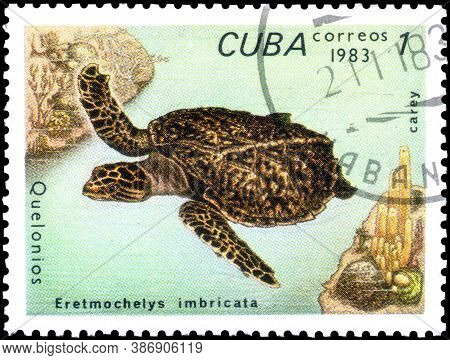 Saint Petersburg, Russia - September 18, 2020: Postage Stamp Issued In The Cuba The Image Of The Haw