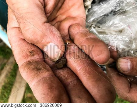The Man Has Various Repair Tools In His Hands. A Man Goes Through Nails, Nuts, Bolts. On The Hand Ar