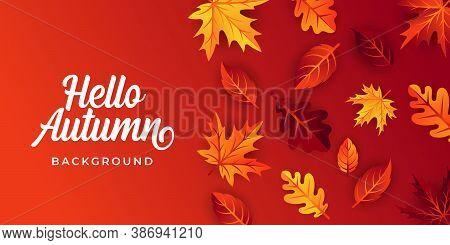 Autumn. Autumn vector. Autumn holiday vector. Autumn vector background. Autumn vector illustration. Autumn holiday design. Autumn leaves vector. Decorative Autumn Season vector illustration for background, banner, poster, and invitation design.