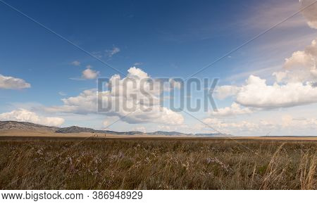 Steppe Meadow In Khakassia. Landscape With A Grass, Hills And The Sky.