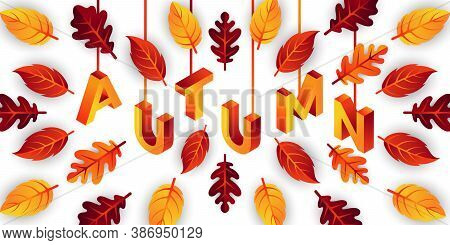 Autumn. Autumn vector. Autumn holiday vector. Autumn vector background. Autumn vector illustration. Autumn holiday design. Autumn leaves vector. Decorative Autumn Season vector illustration for background, banner, poster, and invitation design.