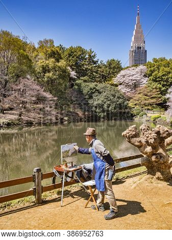 4 April 2019: Tokyo, Japan - Artist Painting Cherry Blossom And The Lake In Shinjuku Gyoen National