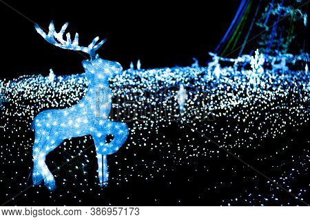 Illuminated Christmas Reindeer Walking In Lights. Winter Illuminations Around Christmas And New Year