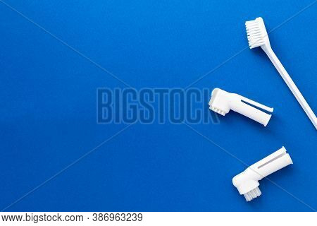 Toothbrushes For Dogs And Cats On Blue Background. Kit For Pet Dental Care. Healthy Tooths. Veterina