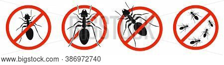 The Ants With Red Ban Sign. Stop Ants Sign Isolated. Set Of Kill Ants Icons. Vector Illustration.