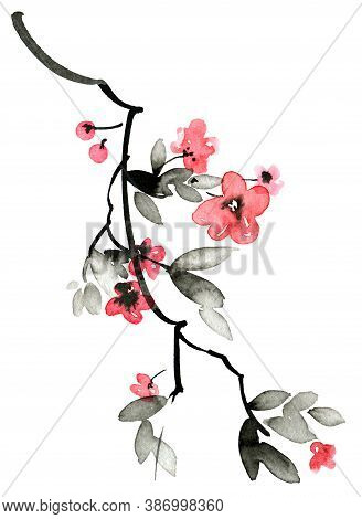Watercolor And Ink Illustration Of Sakura Tree With Flowers And Leaves. Oriental Traditional Paintin