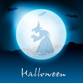 Halloween moon light night background with witch silhouette. EPS 10. poster