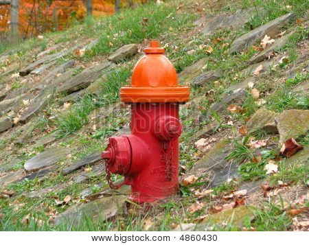 Red Fire Hydrant On Slope