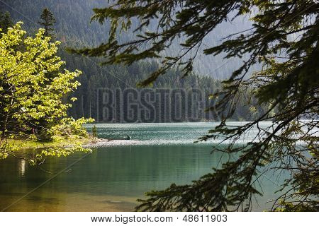 Photo cleanest lake in the mountains