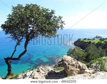 panoramic views of the Mediterranean Sea. Akamas peninsula Cyprus poster