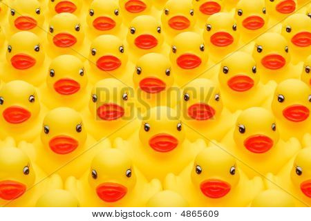 Rubber Duck Army