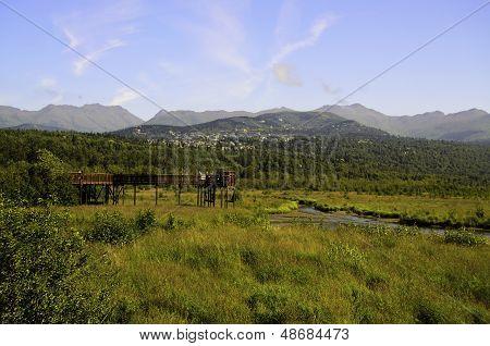 Wetlands Alaska