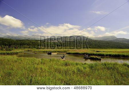 Alfareros Marsh Alaska