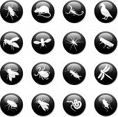a set of sixteen internet buttons of rodents and insects poster