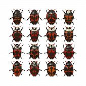 An illustration of 16 different red bugs poster
