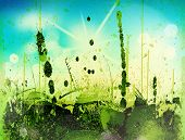 Blurry green field and blue sky with summer sun burst poster