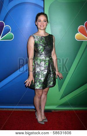 Erika Christensen at the NBC Press Tour, Beverly Hilton, Beverly Hills, CA 07-27-13
