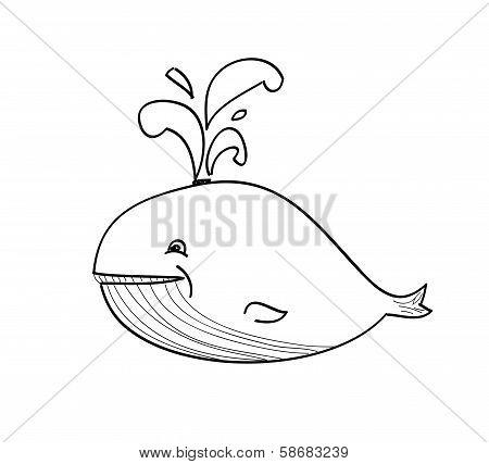 Happy Whale Cartoon
