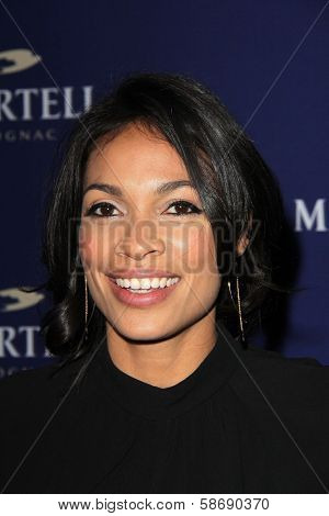 Rosario Dawson at the Launch Celebration for Martell Caractere Cognac, Paramour Mansion, Los Angeles, CA 10-10-13