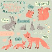 Baby and Mommy Animal Set - for design and scrapbook. Vector illustration. poster