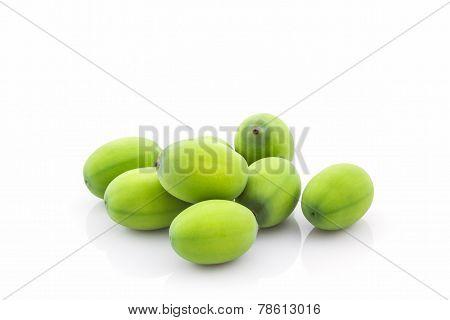 Calyx, Lotus Seeds Green .