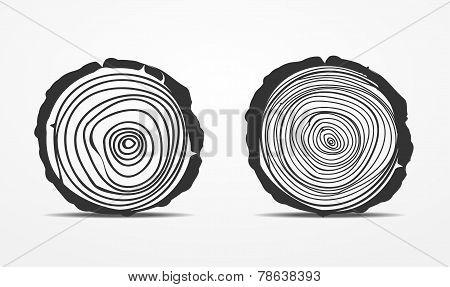 Saw cut tree trunk