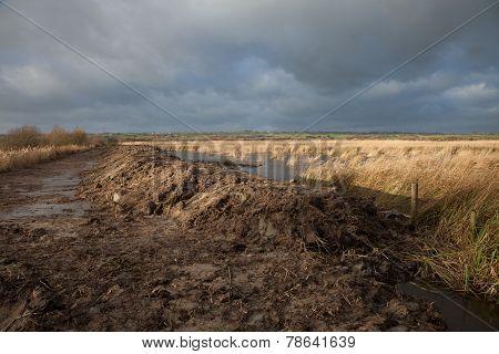 Wetland Flood Prevention.