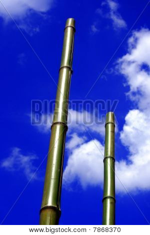 Bamboo Poles And Blue Sky