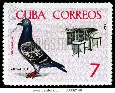 Vintage  Postage Stamp. Birds. Breder Tending Coops.