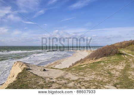 Coast Of Baltic Sea