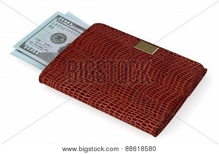 Brown Leather Purse With Money