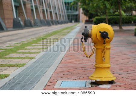 Fire Hydrant